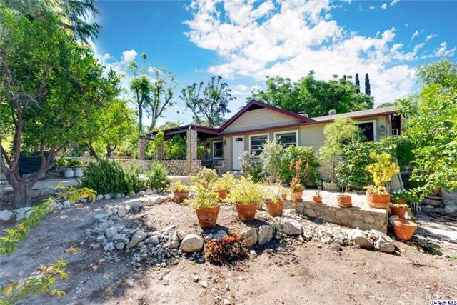 10449 Pinyon Avenue, Tujunga, CA 91042 (#319002634) :: The Brad Korb Real Estate Group
