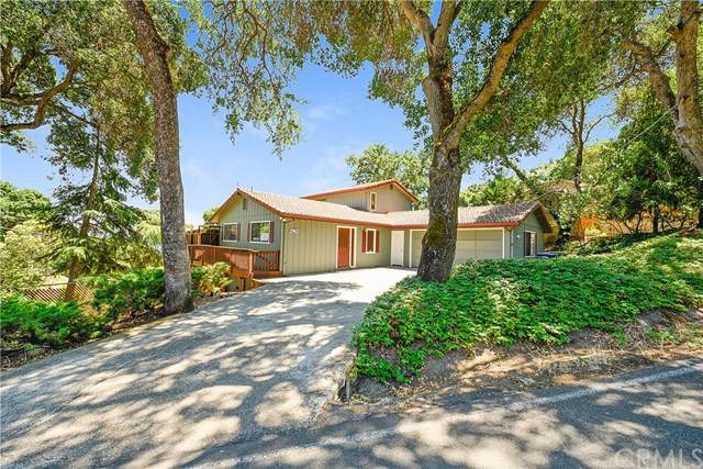 2965 Southlake Drive, Kelseyville, CA 95451 (#LC19156957) :: The Laffins Real Estate Team