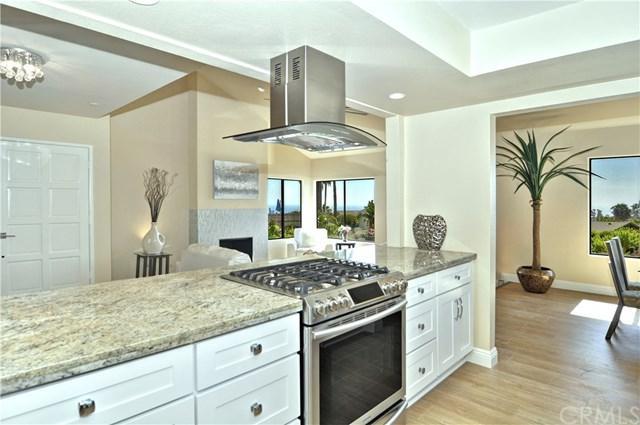 202 Calle Regla, San Clemente, CA 92672 (#OC19159396) :: Z Team OC Real Estate
