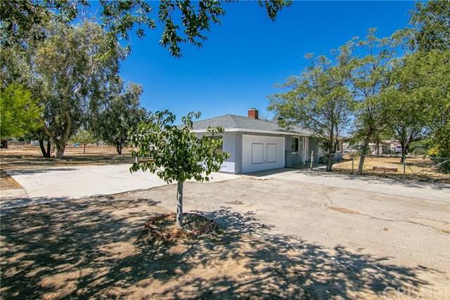 9234 E Avenue Q14, Littlerock, CA 93543 (#SR19160935) :: Fred Sed Group