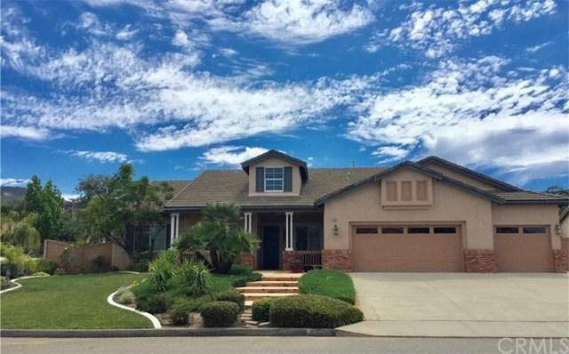 21181 Wade Court, Wildomar, CA 92595 (#SW19166091) :: RE/MAX Empire Properties