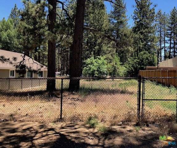 465 Mountainaire Lane, Big Bear, CA 92315 (#19488414PS) :: Fred Sed Group