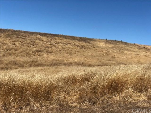 3710 Gruenhagen Flat, Paso Robles, CA 93461 (#SC19167809) :: RE/MAX Parkside Real Estate