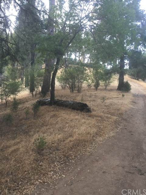 0 Burnt Mill Canyon Road Area - Photo 1