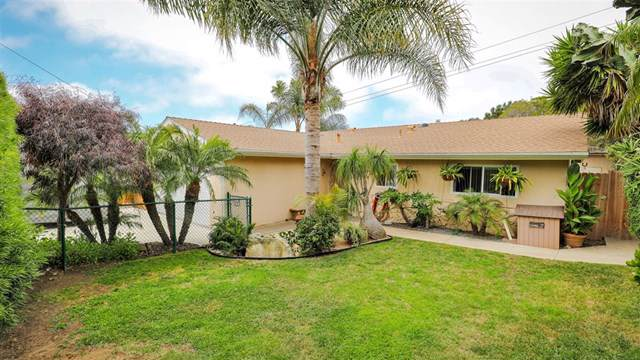 1884 Playa Riviera Dr, Cardiff By The Sea, CA 92007 (#190039584) :: Compass California Inc.