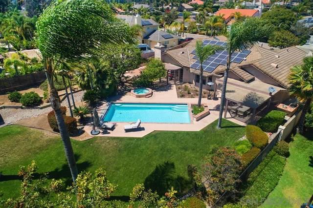 3464 Via Mandril, Bonita, CA 91902 (#190039916) :: Z Team OC Real Estate
