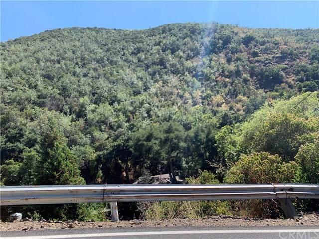 31232 Silverado Canyon Road, Silverado Canyon, CA 92676 (#OC19177000) :: J1 Realty Group