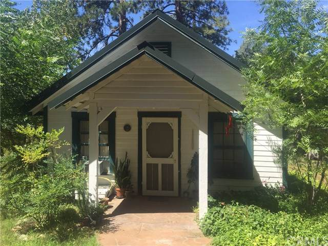 32522 Road 228, North Fork, CA 93643 (#FR19178769) :: Fred Sed Group
