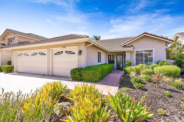 32063 Camino Nunez, Temecula, CA 92592 (#SW19179990) :: Allison James Estates and Homes
