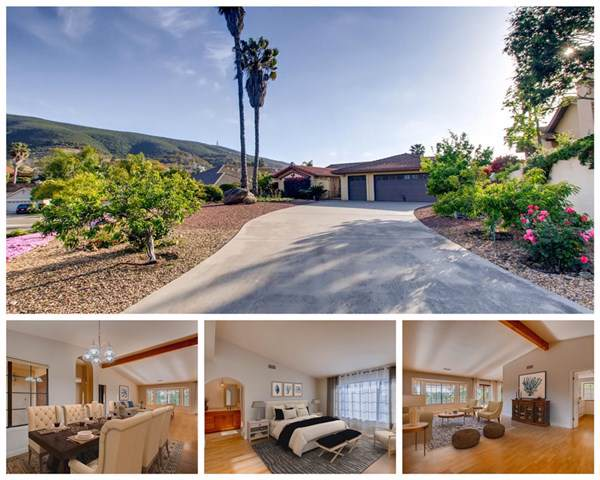 1172 Jugador Ct, San Marcos, CA 92078 (#190042391) :: The Laffins Real Estate Team