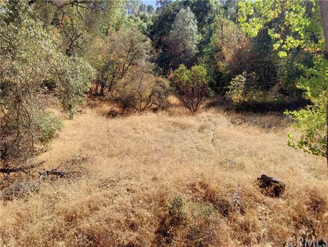 12215 Mountain View Drive, Clearlake Oaks, CA 95423 (#LC19187355) :: Faye Bashar & Associates