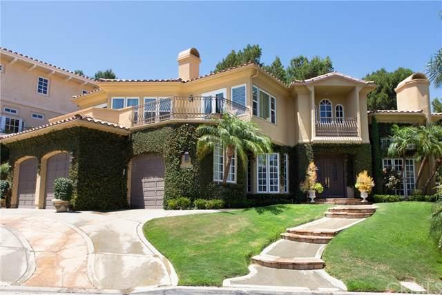 30461 Marbella Vista, San Juan Capistrano, CA 92675 (#OC19184308) :: Cal American Realty