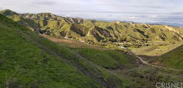 31010 San Martinez Road, Val Verde, CA 91384 (#SR19196466) :: A|G Amaya Group Real Estate