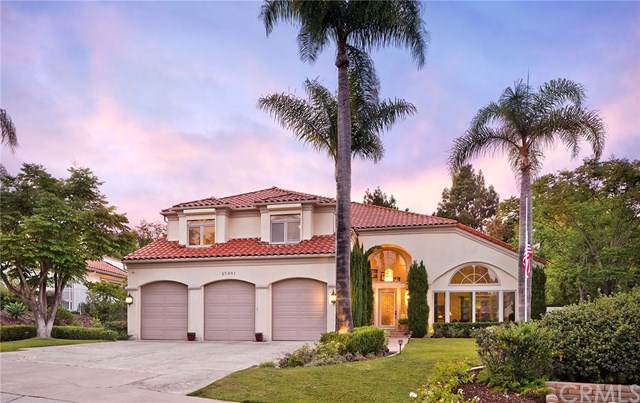 25481 Rapid Falls Road, Laguna Hills, CA 92653 (#OC19193765) :: The Marelly Group | Compass