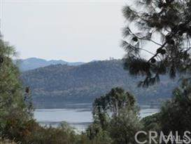 4641 Hawaina Way, Kelseyville, CA 95451 (#LC19197321) :: The Laffins Real Estate Team