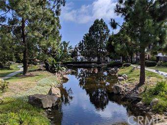 27115-#53 Mill Pond Road, Dana Point, CA 92624 (#OC19198104) :: Pam Spadafore & Associates