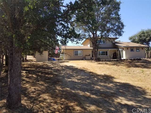 47300 Miwoc Avenue, Coarsegold, CA 93614 (#FR19198210) :: Z Team OC Real Estate