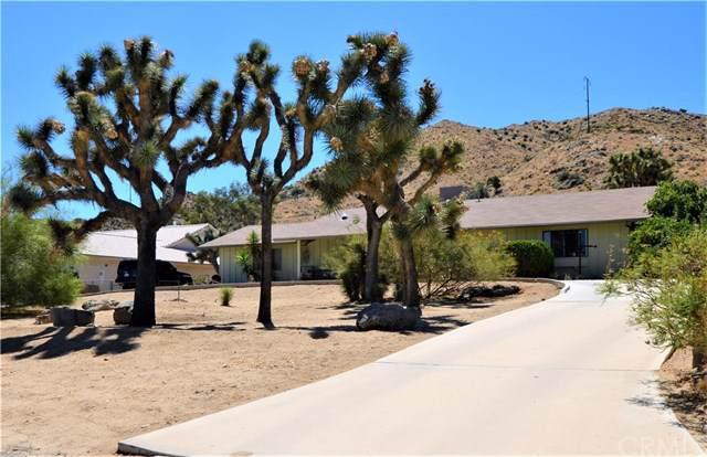 56599 Kismet Road, Yucca Valley, CA 92284 (#JT19199282) :: RE/MAX Masters