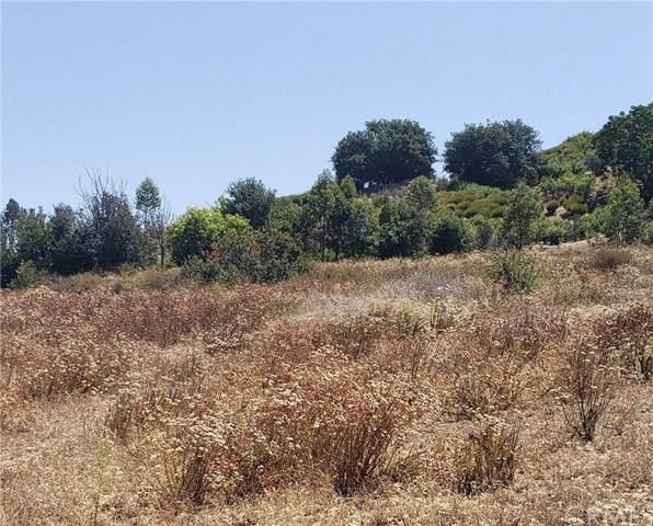 0 Old Castle Road, Valley Center, CA 92082 (#EV19201152) :: Allison James Estates and Homes