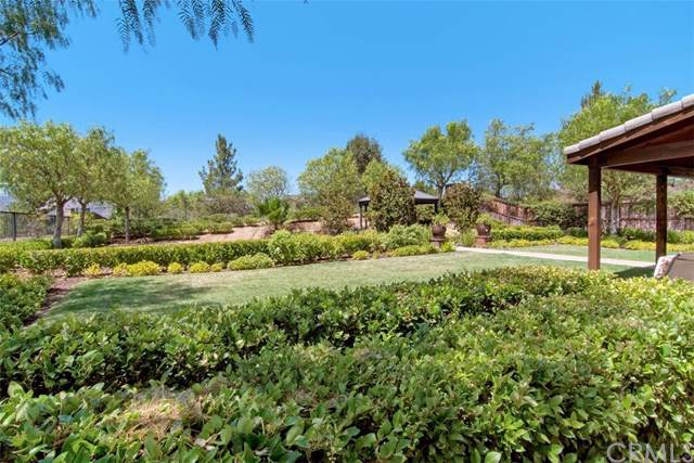 22908 Seattle Ridge Road, Wildomar, CA 92595 (#SW19201706) :: Rogers Realty Group/Berkshire Hathaway HomeServices California Properties