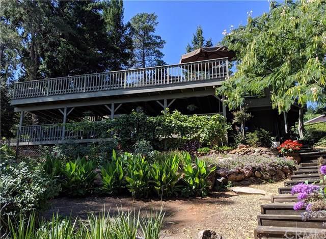 3510 Meadow Wood Drive, Kelseyville, CA 95451 (#LC19194149) :: J1 Realty Group