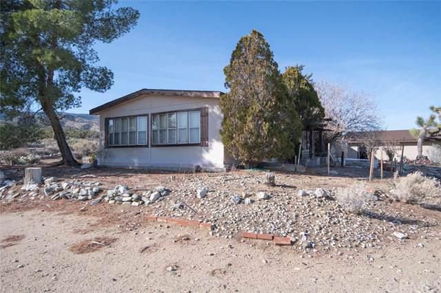 2222 Vista Road, Pinon Hills, CA 92372 (#WS19204459) :: Fred Sed Group