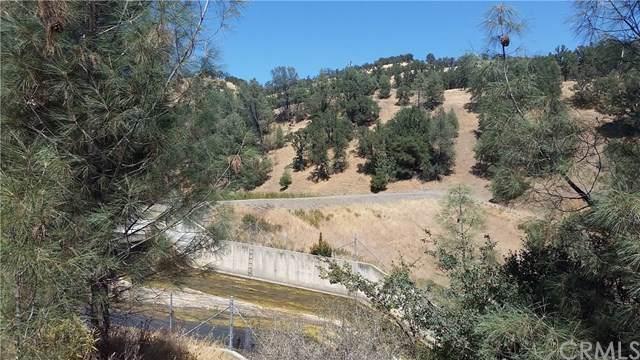 2913 Oak Tree Way, Clearlake Oaks, CA 95423 (#LC19206445) :: Allison James Estates and Homes