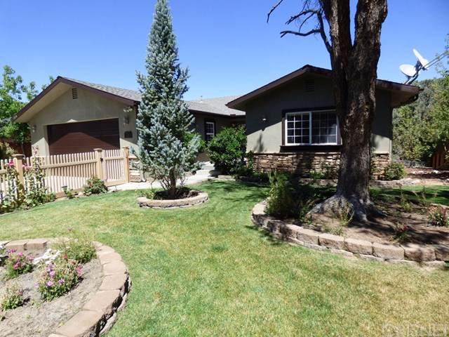 1114 Snowline Drive, Frazier Park, CA 93225 (#SR19207007) :: RE/MAX Parkside Real Estate