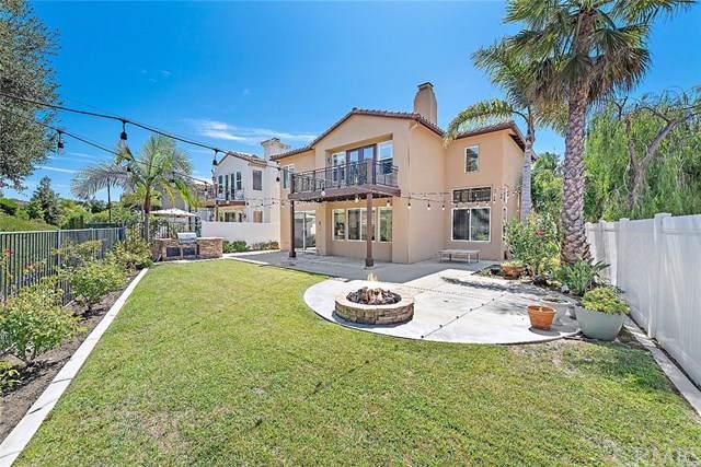 48 Via Sonrisa, San Clemente, CA 92673 (#OC19211027) :: Allison James Estates and Homes