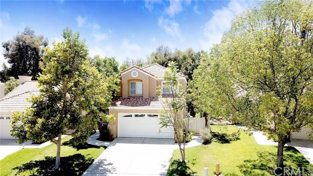 31730 Calle Novelda, Temecula, CA 92592 (#IV19195458) :: Allison James Estates and Homes