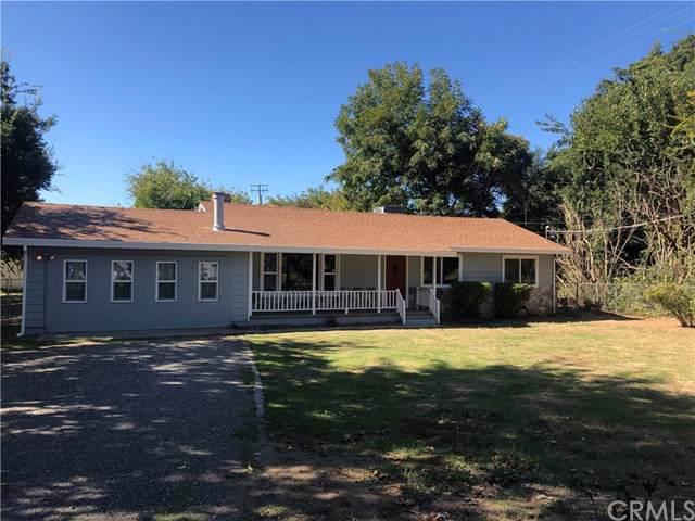 9543 Lott Road, Durham, CA 95938 (#SN19215435) :: The Laffins Real Estate Team