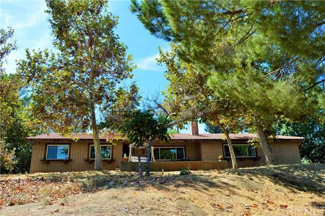 39909 87th Street W W, Leona Valley, CA 93551 (#SR19220168) :: The Parsons Team
