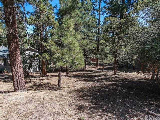 0 Turlock, Big Bear, CA 92314 (#EV19221107) :: RE/MAX Empire Properties