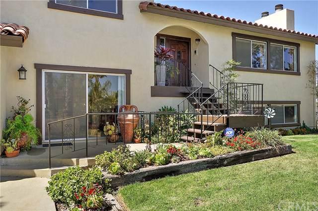 618 Camino Del Rey, Arroyo Grande, CA 93420 (#SP19223801) :: Allison James Estates and Homes