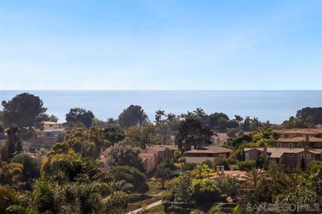 155 Rosebay Dr #4, Encinitas, CA 92024 (#190052305) :: The Najar Group