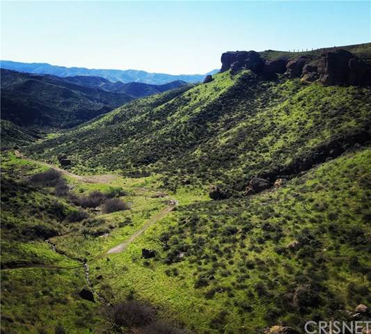 0 Tick Canyon Road, Agua Dulce, CA 91350 (#SR19228179) :: RE/MAX Masters