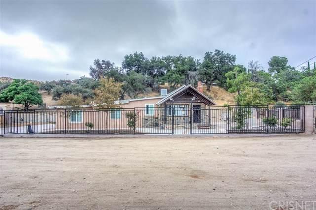 13303 Sierra Highway, Agua Dulce, CA 91390 (#SR19228339) :: RE/MAX Estate Properties