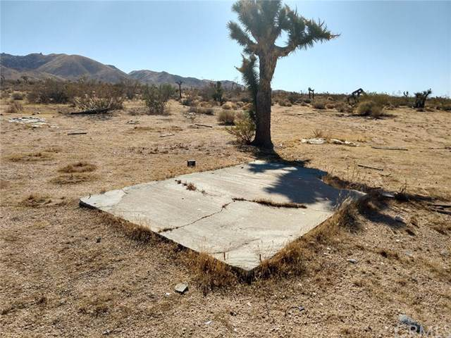 0 Ocotillo Way, Lucerne Valley, CA 92356 (#EV19232867) :: Crudo & Associates