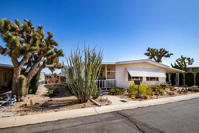 7501 Palm Avenue #150, Yucca Valley, CA 92284 (#219031391PS) :: RE/MAX Masters