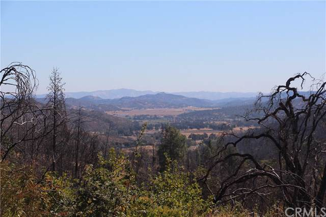 11155 Socrates Mine Road, Middletown, CA 95461 (#LC19241311) :: J1 Realty Group