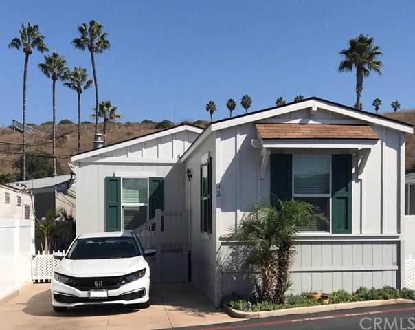 34052 Doheny Park Road #83, Dana Point, CA 92624 (#OC19241876) :: That Brooke Chik Real Estate