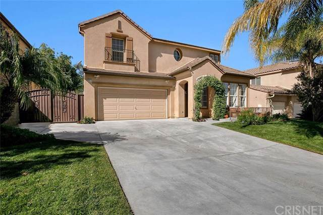 30375 June Rose Court, Castaic, CA 91384 (#SR19241941) :: Case Realty Group