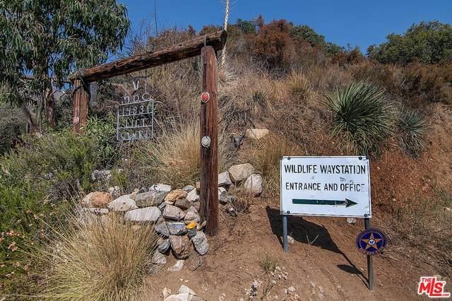 14831 Little Tujunga Canyon Road - Photo 1