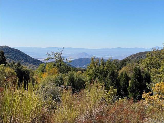 0 Pine Bench Rd, Oak Glen, CA  (#EV19251323) :: The Costantino Group | Cal American Homes and Realty