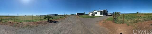 20455 Roser Road, Orland, CA 95963 (#TR19257623) :: The Brad Korb Real Estate Group