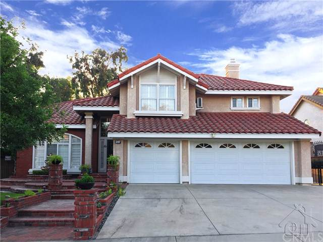 317 Amber Ridge Lane, Walnut, CA 91789 (#TR19261710) :: J1 Realty Group