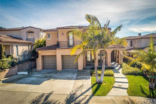 125 Beachcomber Drive, Pismo Beach, CA 93449 (#PI19263846) :: Rose Real Estate Group