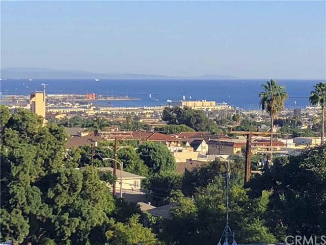 619 S Dodson Avenue, San Pedro, CA 90732 (#PV19263514) :: Sperry Residential Group