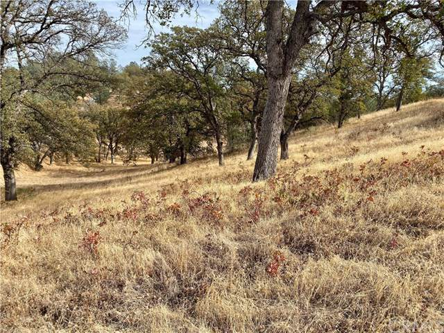 16575 Oakridge Road, Corning, CA  (MLS #SN19266426) :: Desert Area Homes For Sale