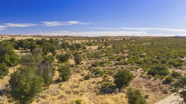 0 Montezuma Valley Rd, Ranchita, CA 92066 (#190062127) :: The Costantino Group | Cal American Homes and Realty